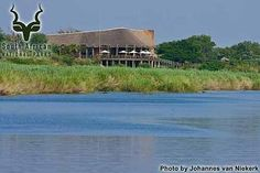 The Kruger National Park is only minutes away. Get a #WildCard and escape to the KNP for lunch over the weekend.