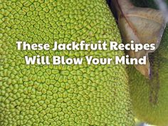 It's time to welcome jackfruit into your diet. Try our favorite recipes using…