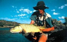 Largemouth Yellowfish on fly Fly Guy, Carp, Trout, Fly Fishing, Owl, Brown Trout, Owls, Common Carp, Fly Tying