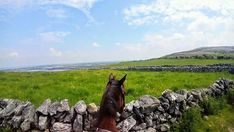 Horse riding vacations with Cooper's Hill Equine on the Wild Atlantic Way,West of Ireland. We organise hunting, trekking in the Burren, & beach riding. Time Travel, Us Travel, Riding Holiday, Horse Ears, Horse Riding, Trekking, Coastal, Horses, Memories