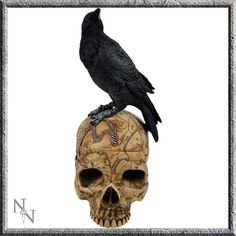 Nemesis Now Shop - 'Salem's Familiar'.