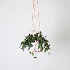 Beaded air plant hanger by AMradio