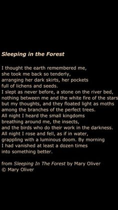 Next time you are at the bookstore, look up Mary Oliver in the poetry section. She will change your life. (For real.) Richard Dawkins Cuánto té extraño pulgoso 😞😟😢🌹🌹🌻🌻🌻🌻🌻 By Yehuda HaLevi – Inspiration for story Pretty Words, Beautiful Words, Mary Oliver Poems, Stress, Poem Quotes, Thats The Way, Motivation, Wise Words, Quotations