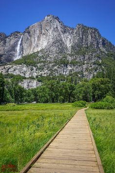 Experience the best hikes and viewpoints in Yosemite National Park with this list of things you can't miss -- written by a former park ranger! Beautiful Places In California, Beautiful Places In America, Beautiful Places To Visit, Cool Places To Visit, California National Parks, Yosemite National Park, California Travel, Camping In Pennsylvania, Yosemite Falls