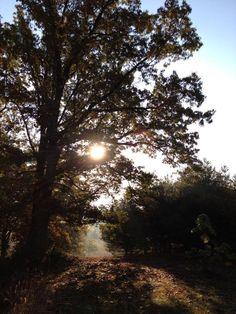 Happy Fall Day! Check us out at hockinghillsfarm.com