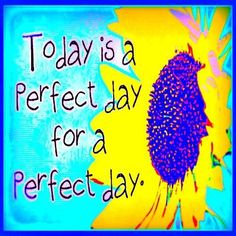 Today is a perfect day for a perfect day.