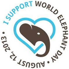 For World Elephant Day people are raising awareness for the large mammals, from calling an end to the ivory trade to highlighting better efforts towards their conservation. World Elephant Day, Elephant Love, Elephants Never Forget, Save The Elephants, National Elephant Day, International Youth Day, Rainforest Habitat, Ivory Trade, African Elephant