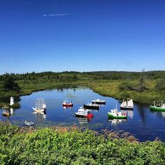 A river full of #model #boats in #Newfoundland.