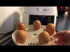 Cómo cocer huevos en Fussioncook FC 7 Smart - YouTube Coco, Eggs, Kitchen Appliances, Breakfast, Youtube, Gastronomia, Appetizers, Cooking Recipes, Good Food
