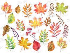 Oak Leaves, Autumn Leaves, Leaf Clipart, Leaf Drawing, Fall Wallpaper, Tulips Flowers, Frame Wreath, Digital Invitations, Line Art