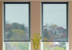 Motorized Shades: Top 6 DIY Motorized Window Treatment Systems - EH Network