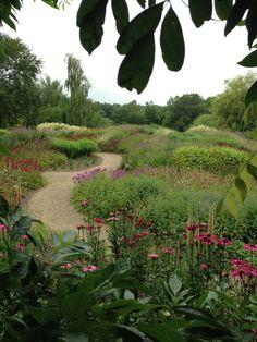 Piet Oudolf's Millenium Garden at Pensthorpe Nature Reserve Garden Landscaping, Dutch Gardens, Garden Landscape Design, Beautiful Gardens, Coastal Gardens, Prairie Garden, Cottage Garden, Plants, Natural Garden