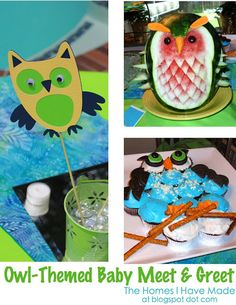 Owl party ideas. Mikey could totally make that fruit thingy too!! :)