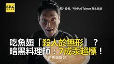 #惡魔在身編:夭壽唷~ 有7成的魚翅汞含量超標! #請分享 保護鯊魚 由你我做起!  影片授權: WildAid Taiwan 野生救援 喜翔 #魚翅 #害人 #汞 #中毒