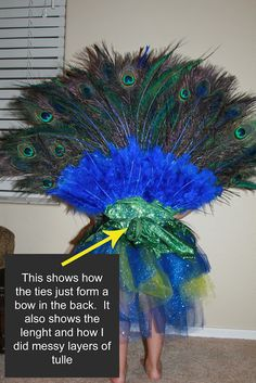Peacock costume tutorial from Sew Crafty Girl