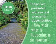 Hoy se me presentan nuevas y maravillosas oportunidades. Fluyo con lo que está sucediendo en el momento #LouiseHay  #Atrévete a #serfeliz #desdeelamor