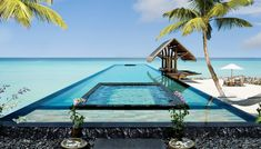 One&Only Reethi Rah Reethirah Island, Maldives Beach Beachfront Hotels Luxury Pool Romance Romantic Trip Ideas Tropical Wellness tree swimming pool leisure palm caribbean Sea Ocean Resort plant Lagoon arecales Villa tropics shore sandy