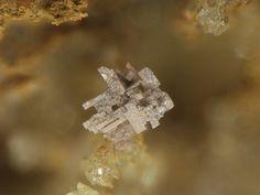 Chlorargyrite. Grube Clara, Wolfach, Schwarzwald, Deutschland FOV=2 mm Photo Stephan Wolfsried