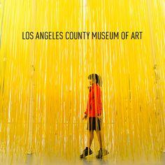 Jesús Rafael Soto's Penetrable at LACMA (LA County Museum of Art) Is a popular instagram spot in LA // localadventurer.com