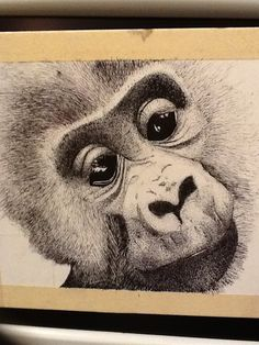 Monkey Monkey, Animals, Art, Art Background, Jumpsuit, Animales, Animaux, Kunst, Monkeys
