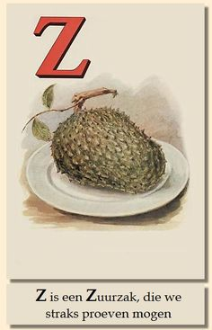 Zuurzak Indonesian Art, Dutch East Indies, The Lost World, Dutch Colonial, Antique Illustration, Vintage Sheets, Vintage Stamps, Old Ads, Fruit