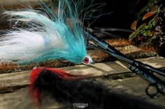 Pike Flaj - streamer na szczupaka Fish, Pets, Animals, Corona, Animales, Animaux, Pisces, Animal, Animais