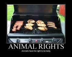 Animal rights funny animal motivational posters. Funny Motivational Pictures, Funny Pictures, Motivational Monday, Funny Quotes, Funny Memes, Vegetarian Humor, Demotivational Posters, All The Things Meme, Funny Things