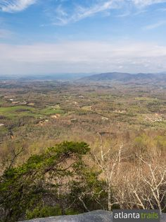 View near the summit of Yonah Mountain from the Yonah Mountain Trail