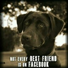 Not every best friend is on facebook.