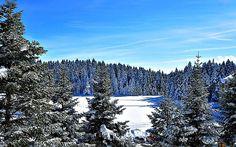 Türkiye'deki Kayak Merkezleri Esentepe – Bolu