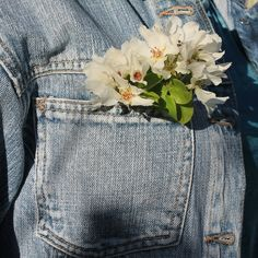 Flowers in your shirt pocket