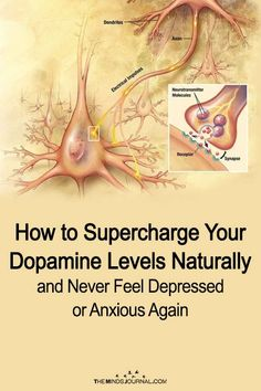 Correct dopamine levels to control depression & anxiety. Holistic Health Tips for Beginners, Mental Health Dopamine does more than just boost our happiness. How to Supercharge Your Dopamine Levels Naturally and Never Feel Depressed or Anxious Again Health And Wellness, Health Tips, Health Fitness, Fitness Workouts, Natural Cures, Natural Health, Natural Remedies For Adhd, Natural Depression Remedies, Stress