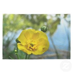 Buttercup at the Pond Kitchen Towels