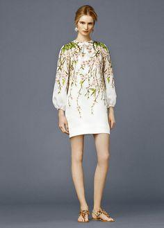 Dolce & Gabbana Spring / Summer 2014