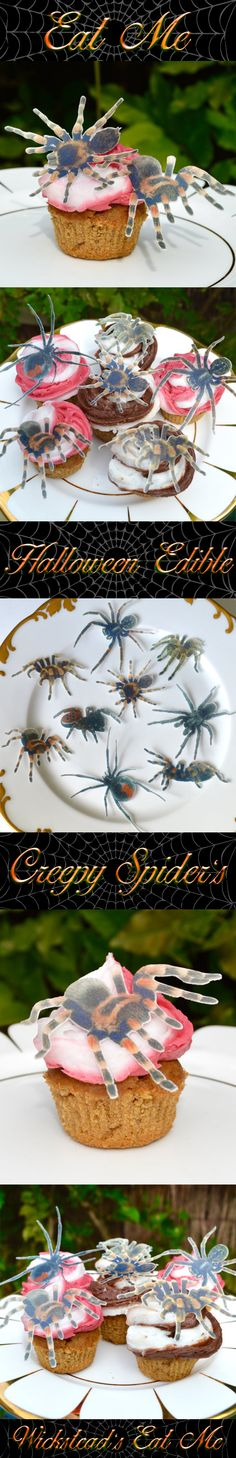 Edible Halloween Creepy Spiders - Eat them before they Eat You! These look so real they are perfect additions to your Biscuits Cookies Cupcakes Cakes & Sandwiches to scare your guests at Halloween or Gothic Event. www.WicksteadsEatMe.etsy.com