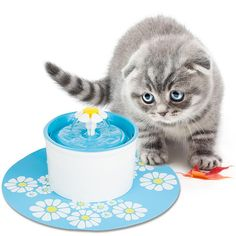 Dishes, Feeders & Fountains New Gummi Meow Cat Bowl Blue To Have A Long Historical Standing