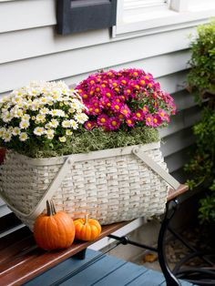 DIY: Fall Baskets put the whole pot in the basket, surround with moss and then plant in the graound when season is over. Autumn Garden, Autumn Home, Mums In Pumpkins, Calla, Autumn Display, Autumn Decorating, Decorating Ideas, Decor Ideas, Fall Flowers