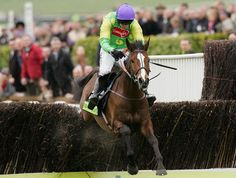 Ruby Walsh and Kauto Star clear the final fence on their way to victory in The totesport Cheltenham Gold Cup Horse Racing Books, Gold Cup, Horses, Stars, Fence, Sterne, Horse, Star