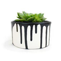 Paint drip succulent planter @linesacross