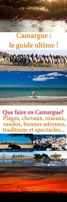 155 Best Alsace + Cote d Azur Trip images   Destinations, France ... 301bae9326a