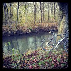 Dieter's Radtouren: 16.11.13 - Seibersdorf Mountain Biking, Country Roads, Bike, Bike Rides, Bicycle, Bicycles