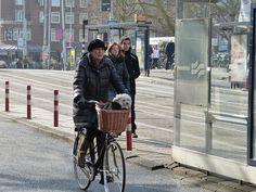 Amsterdam Leidesplein