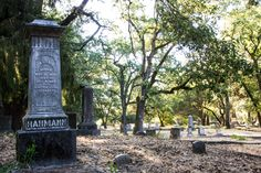 Local History, A 17, Cemetery, Paths, The Past, Santa, Tours