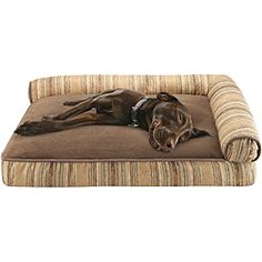 kong dog bed -the perfect bed for strong chewers! its advertised