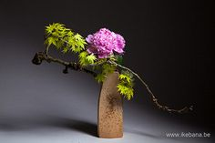 Develop creative skills to make beautiful living Japanese floral art. Ikebana, often translated as Japanese Flower Arrranging, is much more than flower arranging. It is a philosophy and life-style which helps you slow down and enjoy nature. Contemporary Flower Arrangements, White Flower Arrangements, Ikebana Flower Arrangement, Ikebana Arrangements, Japanese Floral Design, Japanese Garden Design, Japanese Flowers, Art Floral, White Flowers