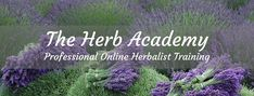 The Best Step-by-Step Online Herbalist Training Paths   Herb Academy