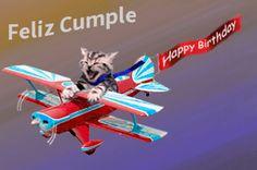 Imágenes+Gif+De+Gatos+Con+Frases+De+Feliz+Cumpleaños