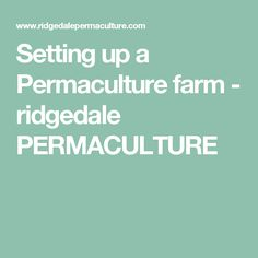 Setting up a Permaculture farm - ridgedale PERMACULTURE