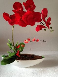 Tropical Flowers, Exotic Flowers, Faux Flowers, Amazing Flowers, Beautiful Flowers, Orchid Flower Arrangements, Ikebana Flower Arrangement, Orchid Plants, Exotic Plants