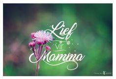 'Lief vir Mamma' Afrikaans quote for Moms. Typography over my own photos! Love for all moms out there! Birthday Wishes Messages, Afrikaanse Quotes, Goeie More, Passion Project, Mom Quotes, Birthdays, Greeting Cards, Typography, Neon Signs